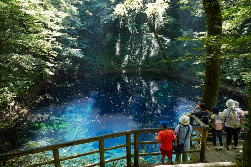 Blue ponds in Shirakami sanchi