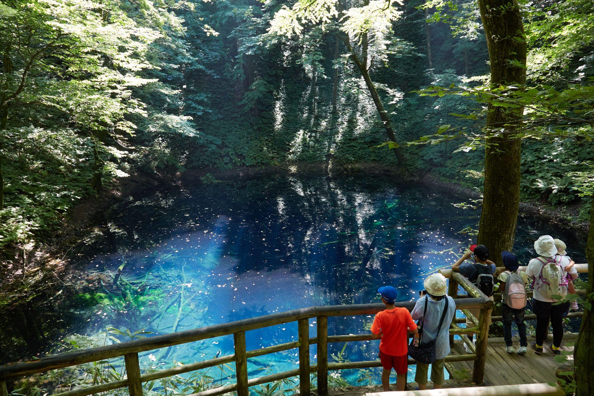 Natural Environment Japan Educational Travel