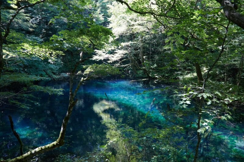 Blue ponds in Shirakami sanchi